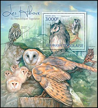 Cl: Northern White-faced Owl (Ptilopsis leucotis)(I do not have this stamp)  new (2012)