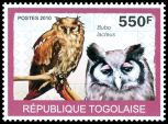 Cl: Verreaux's Eagle-Owl (Bubo lacteus) new (2010)
