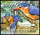 Cl: Malachite Kingfisher (Alcedo cristata)(I do not have this stamp)  new (2011)