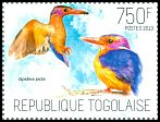 Cl: African Pygmy-Kingfisher (Ispidina picta)(Repeat for this country)  new (2013)
