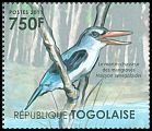 Cl: Mangrove Kingfisher (Halcyon senegaloides)(Out of range)  new (2011)  [7/35]