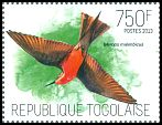 Cl: Rosy Bee-eater (Merops malimbicus) new (2013)