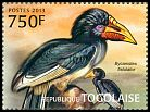 Cl: Piping Hornbill (Ceratogymna fistulator) new (2013)