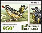 Cl: Yellow-throated Tinkerbird (Pogoniulus subsulphureus)(I do not have this stamp)  new (2015)