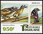 Cl: Red-rumped Tinkerbird (Pogoniulus atroflavus)(I do not have this stamp)  new (2015)