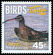 Cl: Bristle-thighed Curlew (Numenius tahitiensis)(Repeat for this country)  new (2017)