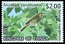 Cl: Wattled Honeyeater (Foulehaio carunculata)(Endemic or near-endemic)  SG 1686 (2013)