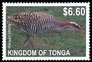 Cl: Buff-banded Rail (Gallirallus philippensis)(Repeat for this country)  SG 1633 (2012)