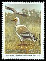 Cl: Egyptian Vulture (Neophron percnopterus) SG 272 (1991) 125