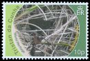 Cl: Inaccessible Island Rail (Atlantisia rogersi)(Endemic or near-endemic) (I do not have this stamp)  SG 997 (2010)