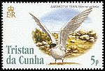 Cl: Antarctic Tern (Sterna vittata)(Repeat for this country)  SG 835 (2005)