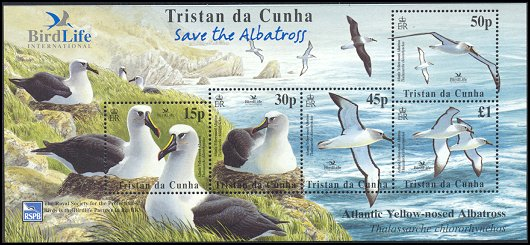 Cl: Yellow-nosed Albatross (Thalassarche chlororhynchos)(Repeat for this country)  SG 774 (2003)