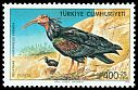 Cl: Northern Bald Ibis (Geronticus eremita) <<Kelaynak>>  SG 2572 (1976) 100