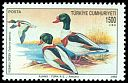 Cl: Common Shelduck (Tadorna tadorna) <<Kusakli ordek>>  SG 3150 (1992)
