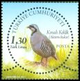 Cl: Chukar (Alectoris chukar) <<Kinali Keklik>>  new (2011)  [7/15]
