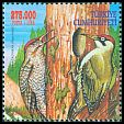 Cl: Green Woodpecker (Picus viridis) <<Yesil Aga&ccedil;kakan>>  SG 3423b (2000)