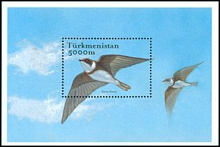 Cl: Bank Swallow (Riparia riparia) SG 112b (2002)
