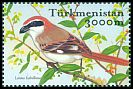 Cl: Rufous-tailed Shrike (Lanius isabellinus) SG 111a2 (2002)