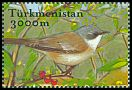 Cl: Lesser Whitethroat (Sylvia curruca) SG 111b3 (2002)