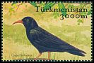 Cl: Red-billed Chough (Pyrrhocorax pyrrhocorax) SG 111a6 (2002)