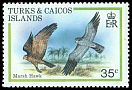 Cl: Northern Harrier (Circus cyaneus) SG 594 (1980) 80