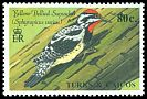 Cl: Yellow-bellied Sapsucker (Sphyrapicus varius)(Repeat for this country)  SG 1015 (1990)