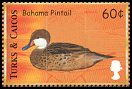 Cl: White-cheeked Pintail (Anas bahamensis)(Repeat for this country)  SG 1584 (2000)