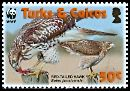 Cl: Red-tailed Hawk (Buteo jamaicensis)(Repeat for this country)  SG 1870 (2007)