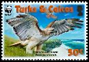 Cl: Red-tailed Hawk (Buteo jamaicensis)(Repeat for this country)  SG 1872 (2007)