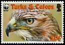 Cl: Red-tailed Hawk (Buteo jamaicensis)(Repeat for this country)  SG 1873 (2007)