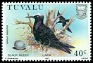 Cl: Black Noddy (Anous minutus) <<Lakia>>  SG 310 (1985) 65