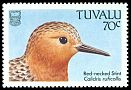 Cl: Red-necked Stint (Calidris ruficollis) SG 514 (1988) 60