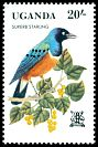 Cl: Superb Starling (Lamprotornis superbus) SG 379 (1982) 60