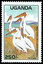 Cl: Great White Pelican (Pelecanus onocrotalus) SG 660 (1988) 575
