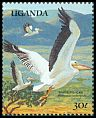 Cl: Great White Pelican (Pelecanus onocrotalus)(Repeat for this country)  SG 716 (1989) 70