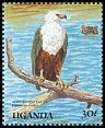 Cl: African Fish-Eagle (Haliaeetus vocifer)(Repeat for this country)  SG 725 (1989) 70