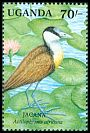Cl: African Jacana (Actophilornis africanus)(Repeat for this country)  SG 902 (1991) 65