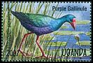 Cl: Purple Swamphen (Porphyrio porphyrio)(Repeat for this country)  SG 1455 (1995)