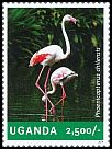 Cl: Greater Flamingo (Phoenicopterus roseus)(I do not have this stamp)  new (2014)