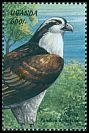 Cl: Osprey (Pandion haliaetus) SG 2099 (1999)