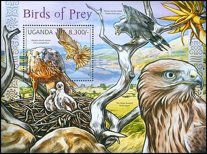 Cl: Western Marsh-Harrier (Circus aeruginosus)(I do not have this stamp)  new (2012)  [7/54]