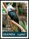 Cl: White-crested Hornbill (Tockus albocristatus)(Out of range) (I do not have this stamp)  new (2014)