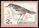 Cl: Rufous-bellied Thrush (Turdus rufiventris) <<Zorzal>>  SG 1205 (1962) 20