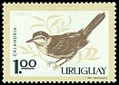 Cl: Chalk-browed Mockingbird (Mimus saturninus) <<Calandria>>  SG 1207 (1962) 220