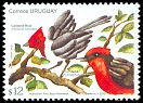 Cl: Vermilion Flycatcher (Pyrocephalus rubinus)(Repeat for this country)  SG 3329 (2012)