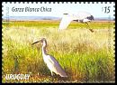 Cl: Snowy Egret (Egretta thula)(Repeat for this country)  new (2015)