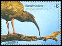 Cl: Plumbeous Ibis (Theristicus caerulescens) new (2015)