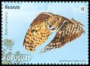 Cl: Great Horned Owl (Bubo virginianus) <<&Ntilde;acurut&uacute;>> (Repeat for this country)  new (2015)