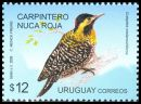 Cl: Green-barred Woodpecker (Colaptes melanochloros) <<Carpintero Nuca Roja>>  SG 3163 (2009) 550 [6/27]