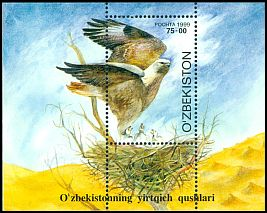 Cl: Long-legged Buzzard (Buteo rufinus) SG 219 (1999) 400